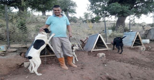 Türkiyeye Örnek Uygulama: Gönüllü Hayvan Dostları Projesi