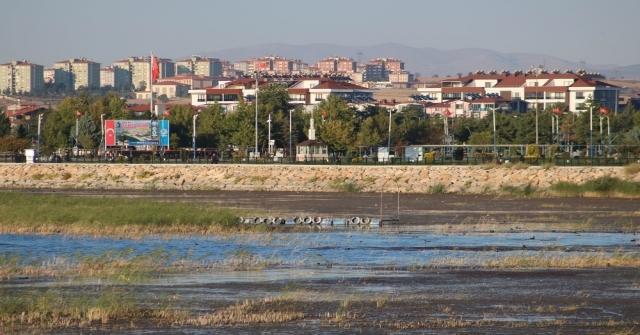 Beyşehir Gölü Kıyılarında Sular Çekiliyor