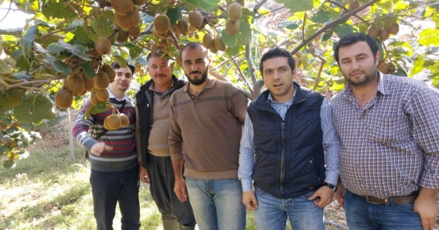 Erdemlide Çiftçilere Kivi Yetiştiriciliği Eğitimi Verildi