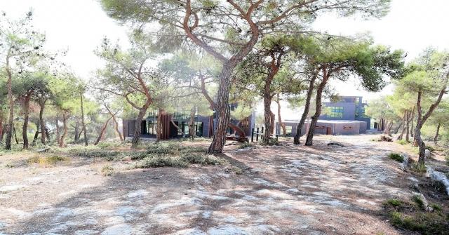 Emirler Kent Ormanı Yeniden Hayat Buluyor