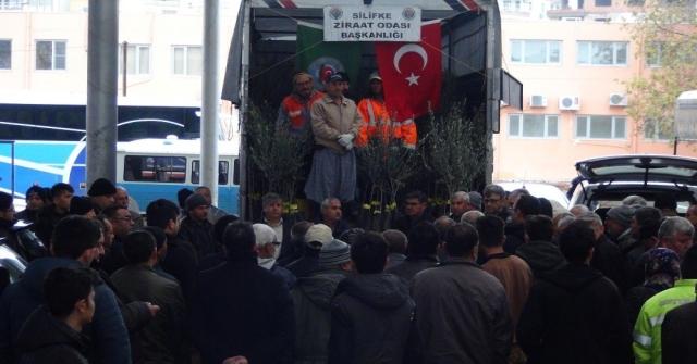 Silifkede Çiftçilere 10 Bin Zeytin Fidanı Dağıtıldı