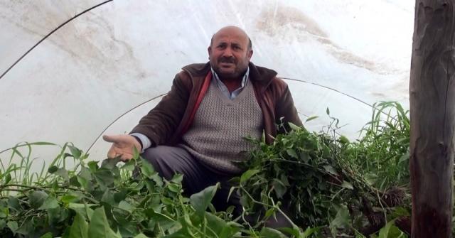Türkiyenin Meyve Sebze Deposu Tarsus, Selin Yaralarını Sarıyor