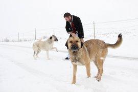 Karaman'da kar yağışı ve tip hayatı olumsuz etkiliyor