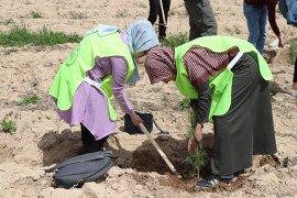 KYK Öğrencileri 300 Fidanı Toprakla Buluşturdu