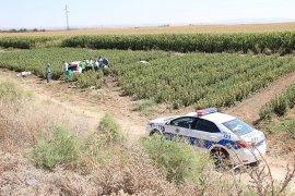 Otomobil fidanlığa uçtu: 2'si çocuk 5 yaralı