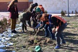 'Toprak Dede' Anısına Fidanlar Toprakla Buluştu