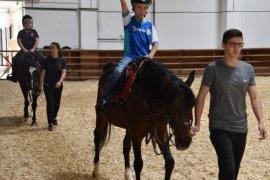Selçuklu Belediyesi yaz spor okullarında binicilik branşı açtı