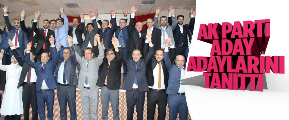 Karaman'da AK Parti'nin Milletvekili aday adayları tanıtıldı