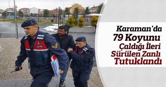 Karaman'da 79 Koyunu Çaldığı İleri Sürülen Zanlı Tutuklandı