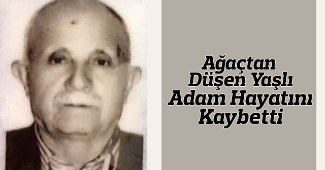 Karaman'da ağaçtan düşen yaşlı adam hayatını kaybetti