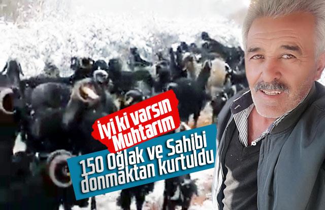 Şaban Cingil mahsur kalan çoban ve hayvanları kurtardı.