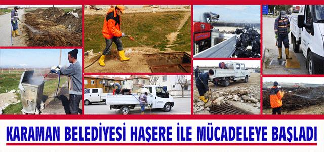 Karaman Belediyesi Haşere İle Mücadeleye Başladı