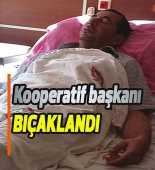 Kooperatif başkanı bıçaklandı