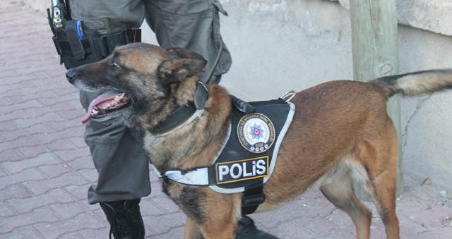 Ereğli'de uyuşturucu operasyonu