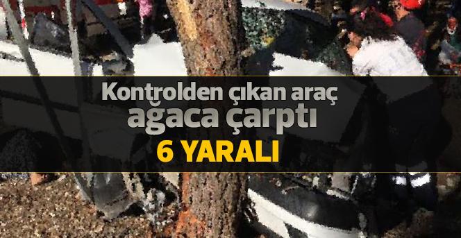 Hafif ticari araç ağaca çarptı: 6 yaralı