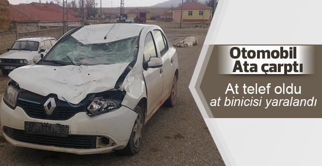 Otomobil üzerinde binicisi olan ata çarptı: 1 yaralı