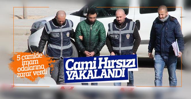 5 Camide  hırsızlık yapan kişi yakalandı
