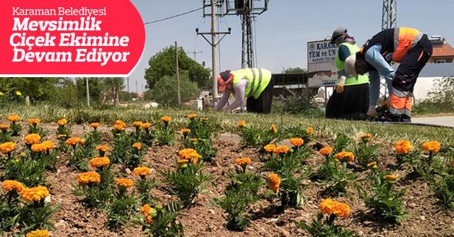 Karaman Belediyesi Mevsimlik Çiçek Ekimine Devam Ediyor