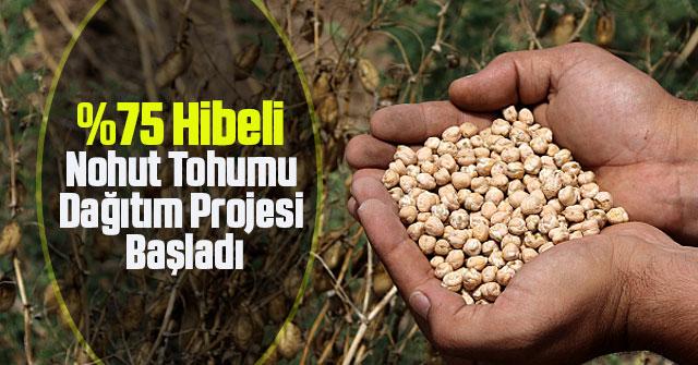 Hibeli Nohut Tohumu Dağıtım Projesi Başladı