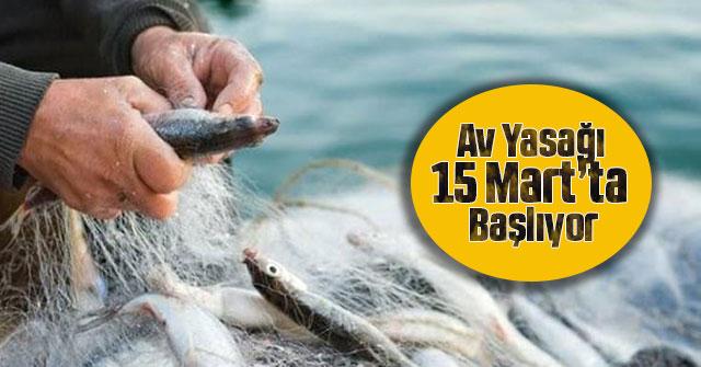Su Ürünleri Av Yasağı 15 Mart Günü Başlıyor