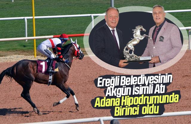 Ereğli Belediyesinin atı birinci oldu